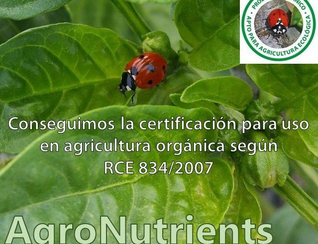 Certificado Ecólogico